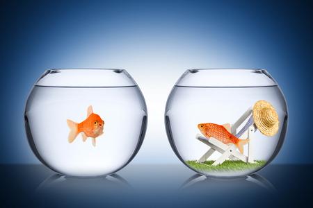 concepto pescado vacaciones