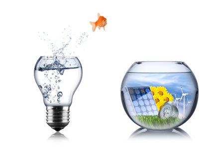 power nature: fish energy change concept