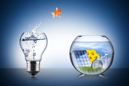 changement d'énergie concept de poissons