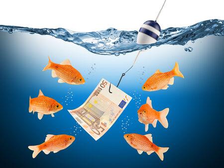 yaw: fish temptation concept
