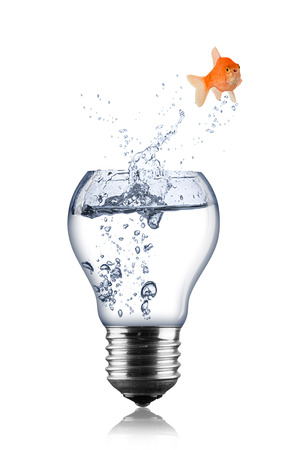 fish lightbulb concept