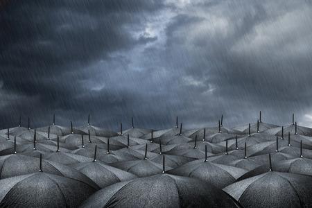 lluvia paraguas: muchos paraguas negros en tiempo de lluvia