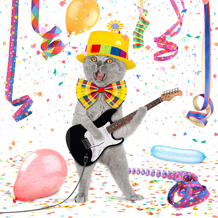 Cat with guitar in middle of confetti and streamer photo