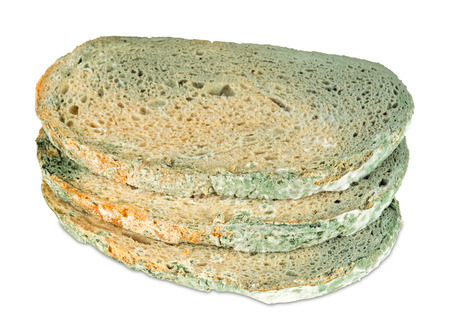 moldy: moldy bread slices on white background Stock Photo