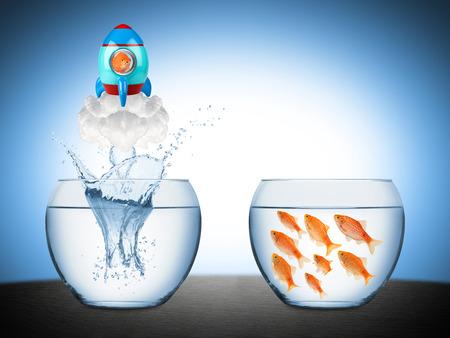 Fisch verlassen Fischglas mit Rucola Standard-Bild - 37734789