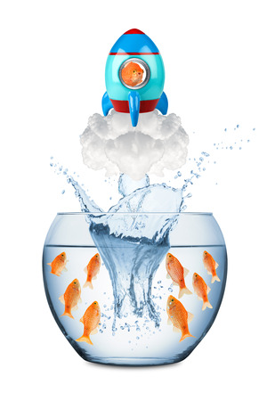 creative freedom: fish leaving fish bowl with rocket