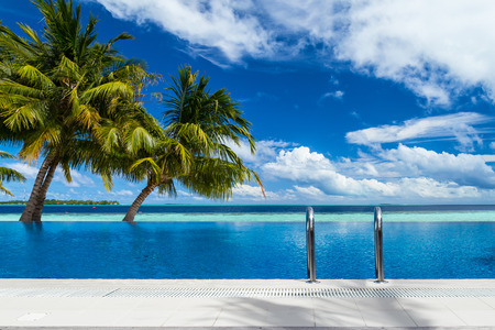 infinity pool with coco palms in front of tropical  landscape