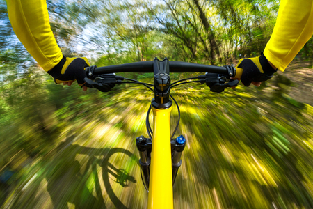 dynamic activity: fast dynamic bicycle in the woods