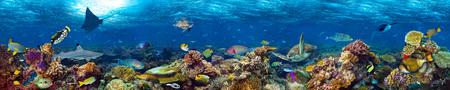 tiefe: Unterwasser-Korallenriff Landschaft super breite Banner Hintergrund in dem tiefblauen Ozean mit bunten Fischen und Meereslebewesen Lizenzfreie Bilder