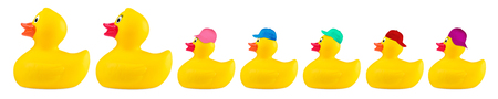 yellow classic rubber bath duck toy cool family concept row isolated on white background