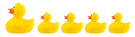 yellow classic rubber bath duck toy family concept row isolated on white background