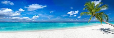 흰 모래와 코 코 야자수와 열 대 낙원 비치 여행 관광 넓은 파노라마 배경 개념