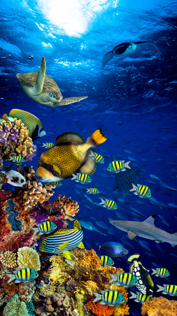 underwater coral reef landscape in the deep blue ocean with colorful fish and marine life vertical format smartphone background wallpaper