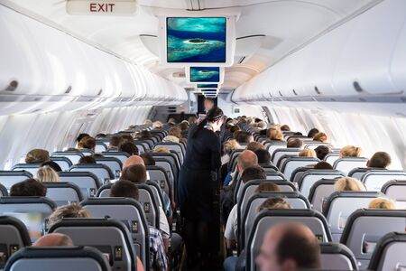Inside view on passenger and cabin crew people on an airline airplane during flight to vacation. Transportation tourism aviation concept