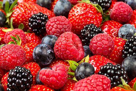 bunte leckere Mischung aus wilden Waldbeerenfrüchten. Erdbeere, Blaubeere, Himbeere und Brombeere. gesunde Ernährung Ernährung veganes Essen Konzept Hintergrund Standard-Bild