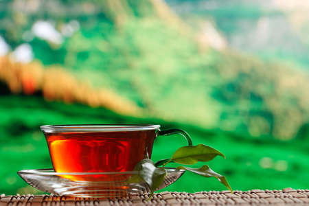 cup of tea natural background Stock Photo