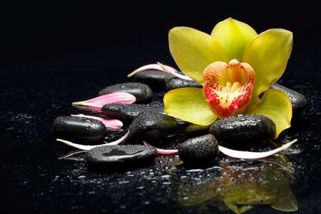 Spa Zen Stones Stock Photo