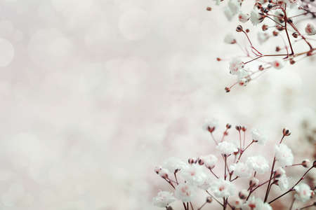 colorize: abstract flower background. flowers made with color filters