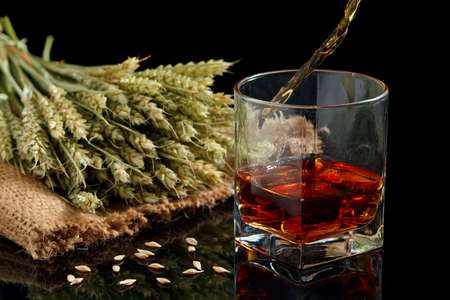 Pouring whiskey into glass, on black background Stock Photo - 20867596