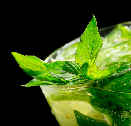 Mojito cocktail on black background photo