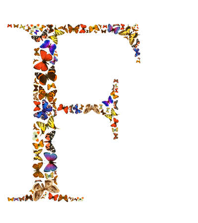 exotic butterflies: Butterfly font in white. Letter F Stock Photo