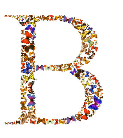 many colored: Butterfly font in white. Letter B Stock Photo