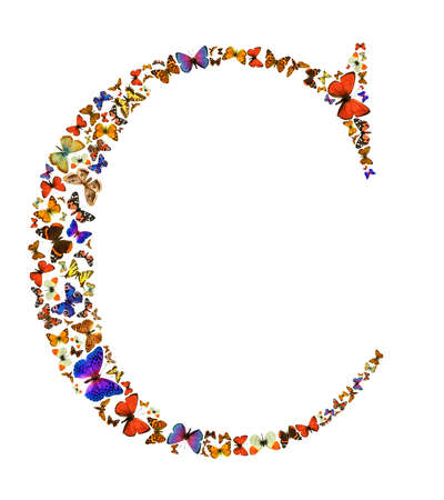 exotic butterflies: Butterfly font in white. Letter C