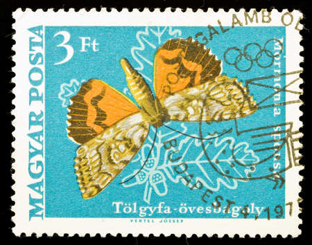 HUNGARY - CIRCA 1975: A stamp printed in Hungary shows butterfly Mormonia Sponsa, circa 1975 Stock Photo - 7149438