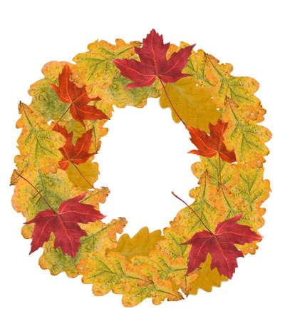 Alphabet of autumn leaves . Letter O photo