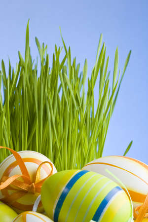 Painted Colorful Easter Eggs on green Grass  photo