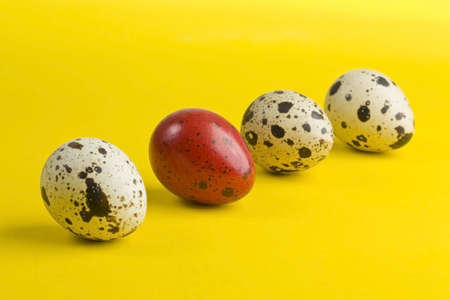 Colorful eggs with one different on yellow background with shadow  photo