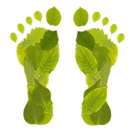 footprint: Estudio de Green Carbon Leaf Footprint disparo Foto de archivo