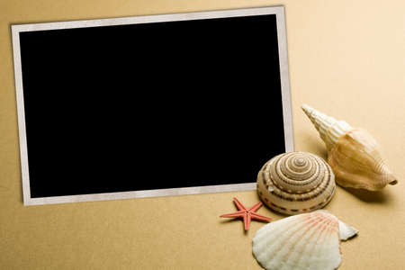 echinoderm: Vacation memories from beach, seashell and starfish, with blank photo frame