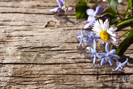 Bouquet of spring flowers on wood background  photo