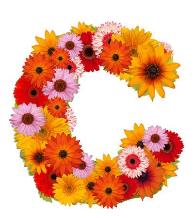 Flower alphabet isolated on white. Letter C Stock Photo - 10225787