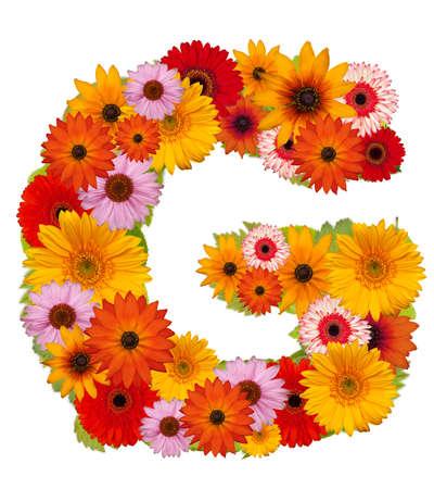 Flower alphabet isolated on white. Letter G Stock Photo - 10225800