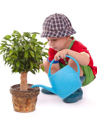 jardinero: un ni�o con una regadera est� dando las flores un poco de agua