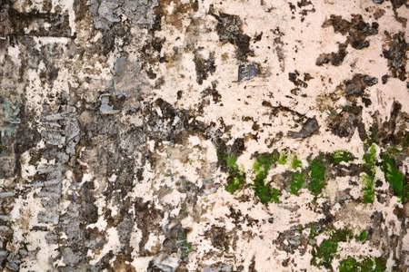 Close up of old wall texture for background photo