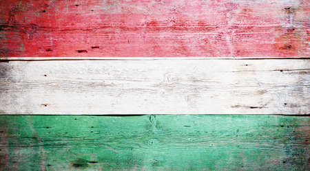 Flag of Hungary painted on grungy wood plank background Stock Photo - 16489244