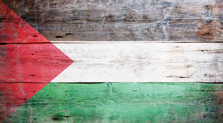 Palestinian flag painted on grungy wood plank background  Stock Photo - 16489247