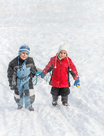 to go sledding: Brothers going up on a hill pulling a sledge
