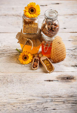Forms of honey: honey,honeycomb, pollen, propolis Stock Photo - 17653071