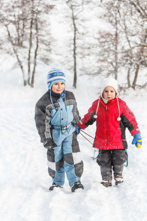 to go sledding: Two little boy going up on a hill pulling a sledge Stock Photo