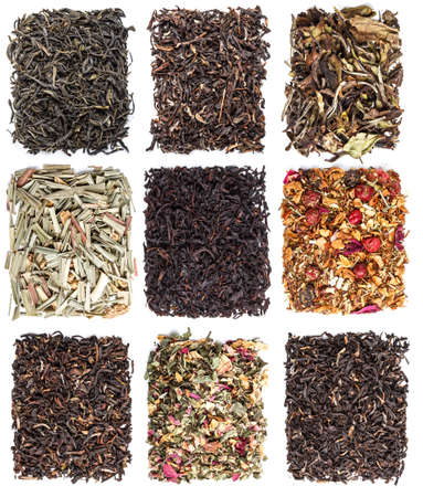 Tea leaves collection on white background photo