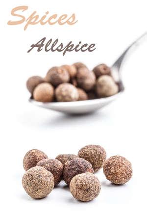 allspice: Allspice on white background