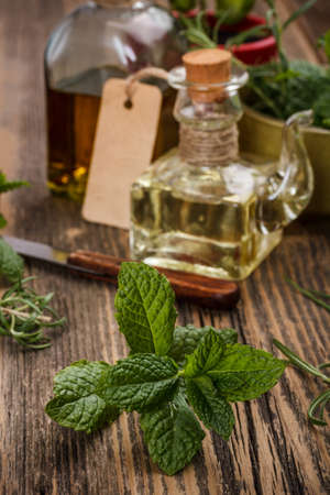 Cooking oil with fresh mint photo
