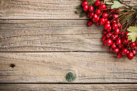 Hawthorn berries on wooden board Stock Photo