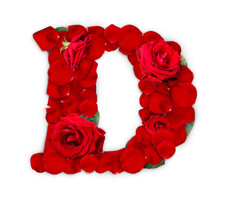 Letter D made from red roses and petals isolated on a white background