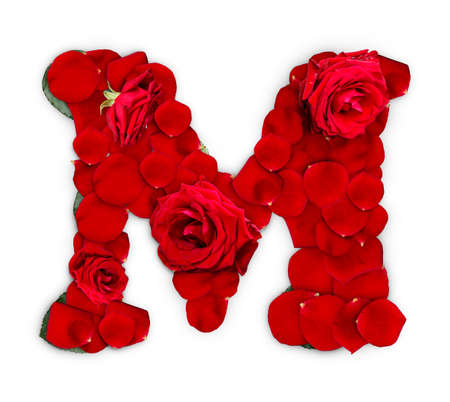 赤いバラから作られた文字 M と白い背景で隔離の花びら