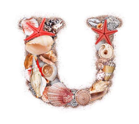Letter U made of seashell isolated on white background photo